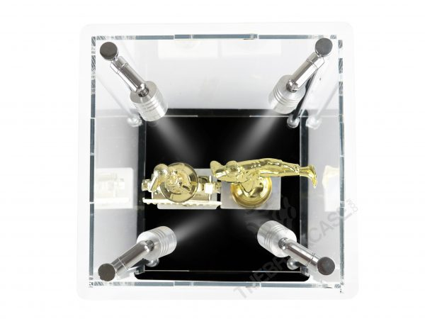 Trophy Display Case